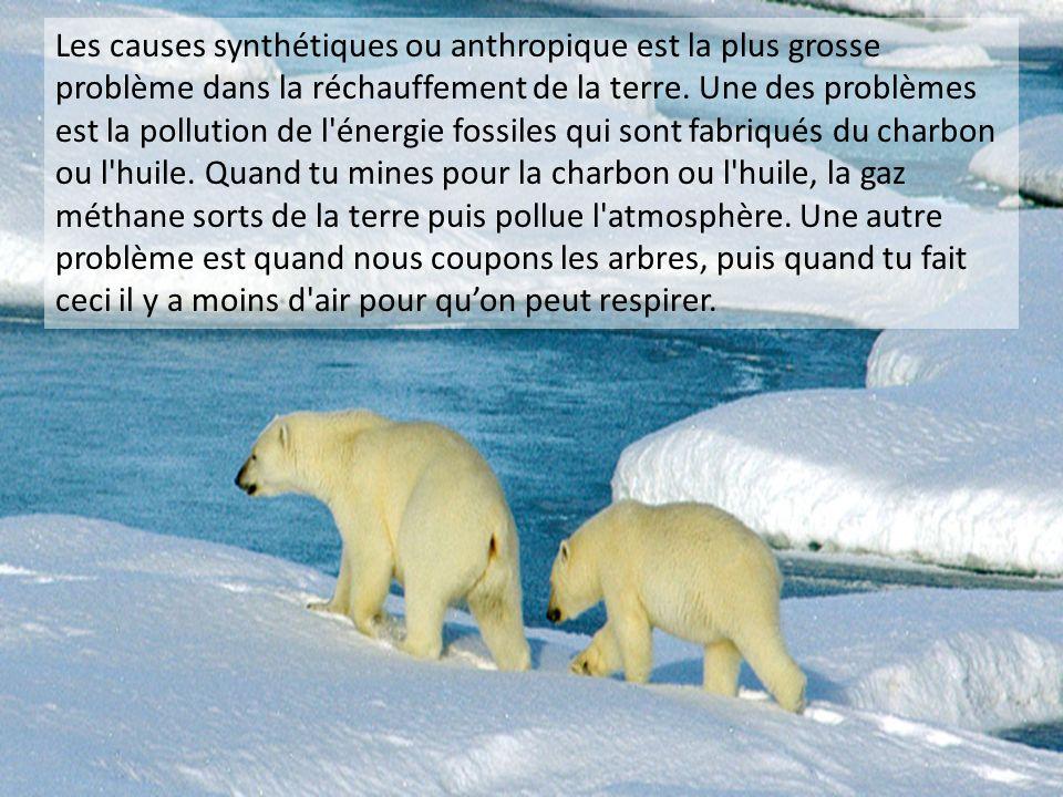 Les causes synthétiques ou anthropique est la plus grosse problème dans la réchauffement de la terre. Une des problèmes est la pollution de l'énergie