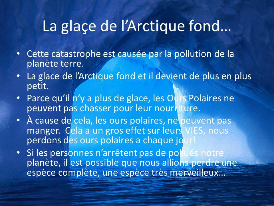 La glaçe de lArctique fond… Cette catastrophe est causée par la pollution de la planète terre. La glace de lArctique fond et il devient de plus en plu