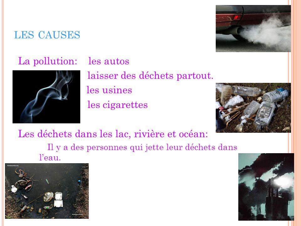 LES CAUSES La pollution: les autos laisser des déchets partout. les usines les cigarettes Les déchets dans les lac, rivière et océan: Il y a des perso