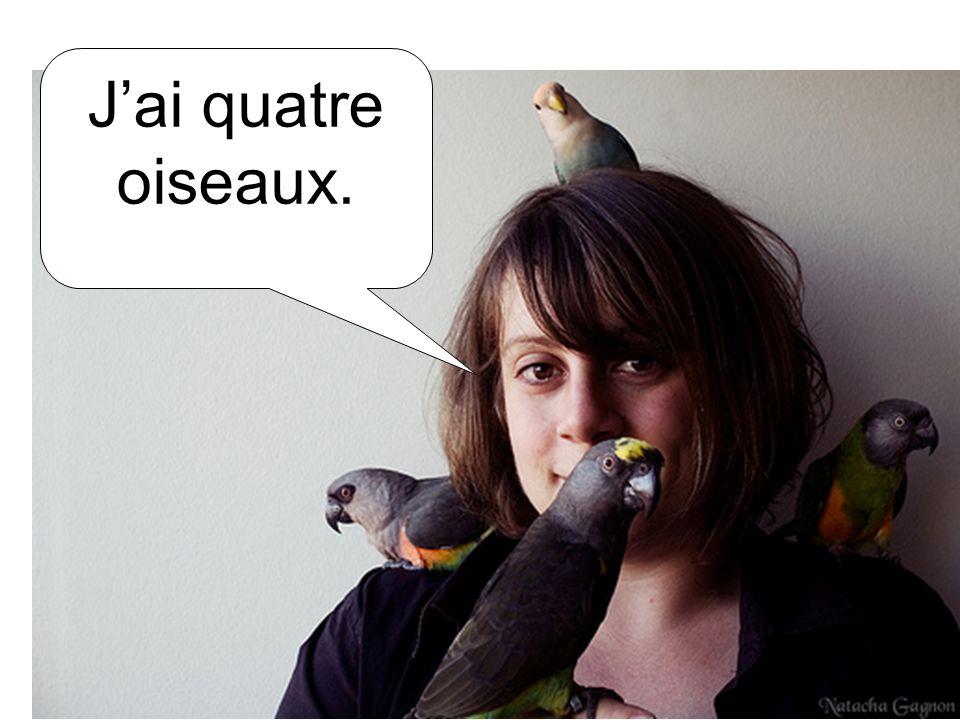 Jai quatre oiseaux.