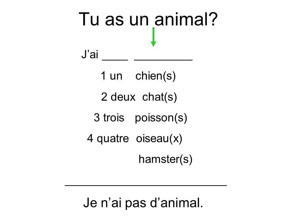 Tu as un animal? Jai ____ _________ 1 un chien(s) 2 deux chat(s) 3 trois poisson(s) 4 quatre oiseau(x) hamster(s) _________________________ Je nai pas