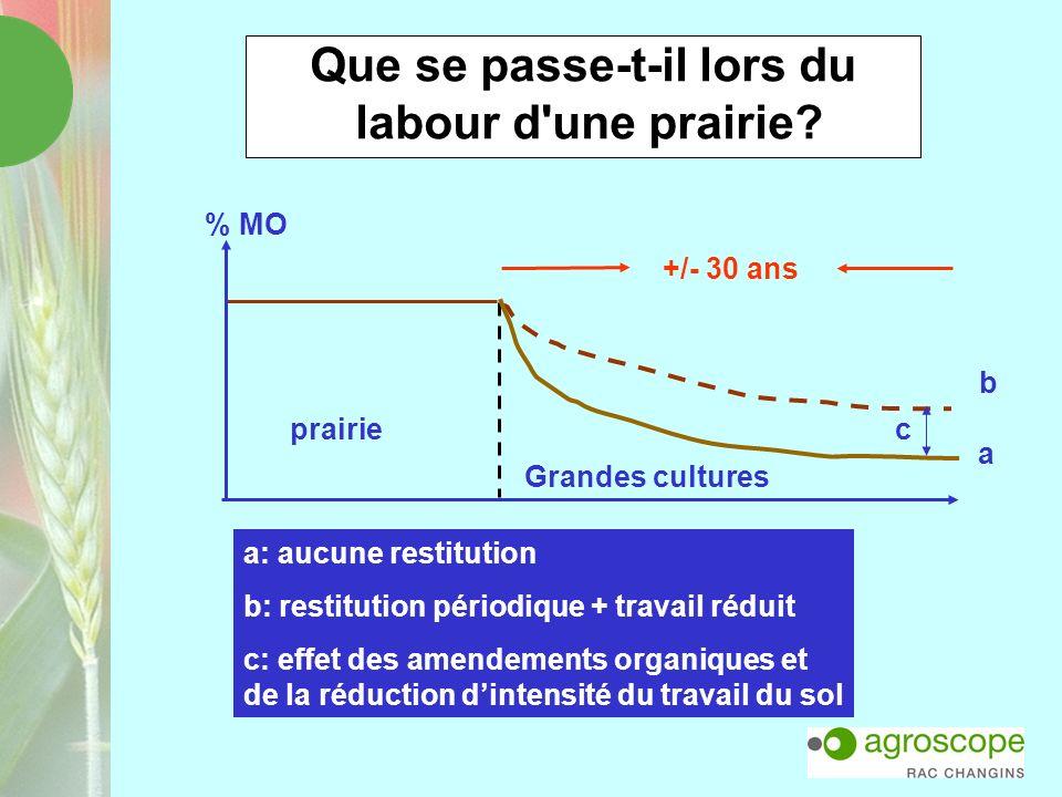 Que se passe-t-il lors du labour d'une prairie? c b a +/- 30 ans prairie Grandes cultures % MO a: aucune restitution b: restitution périodique + trava