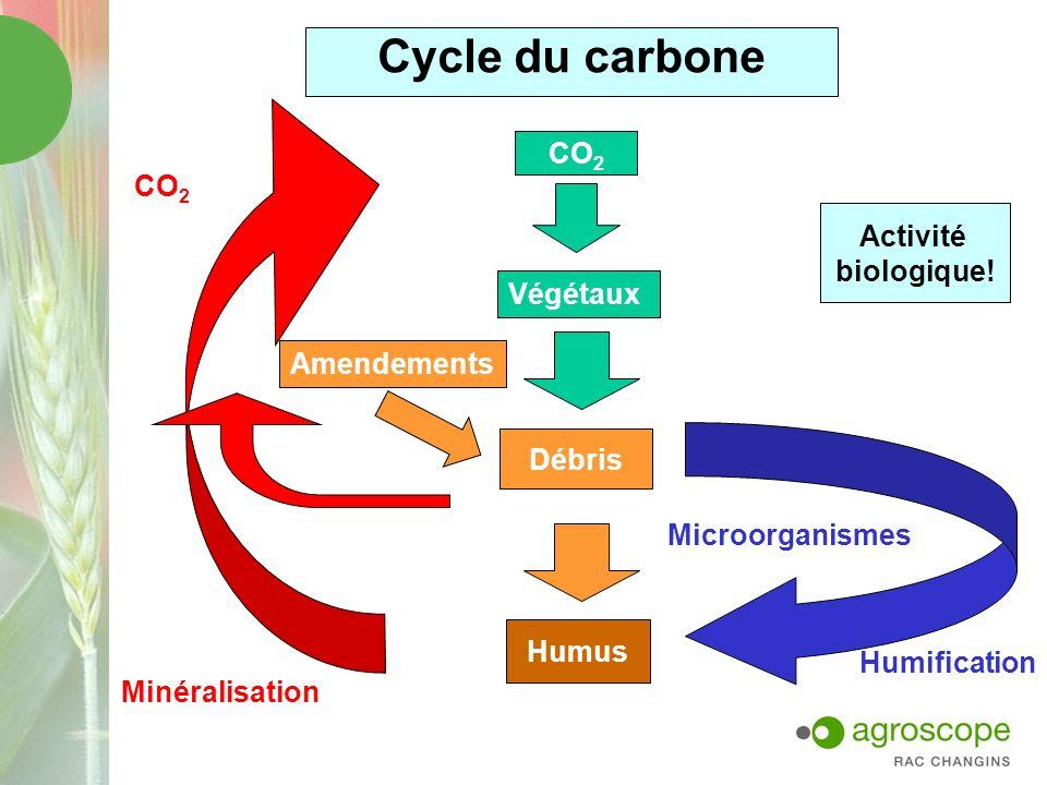 D où vient le carbone organique du sol.