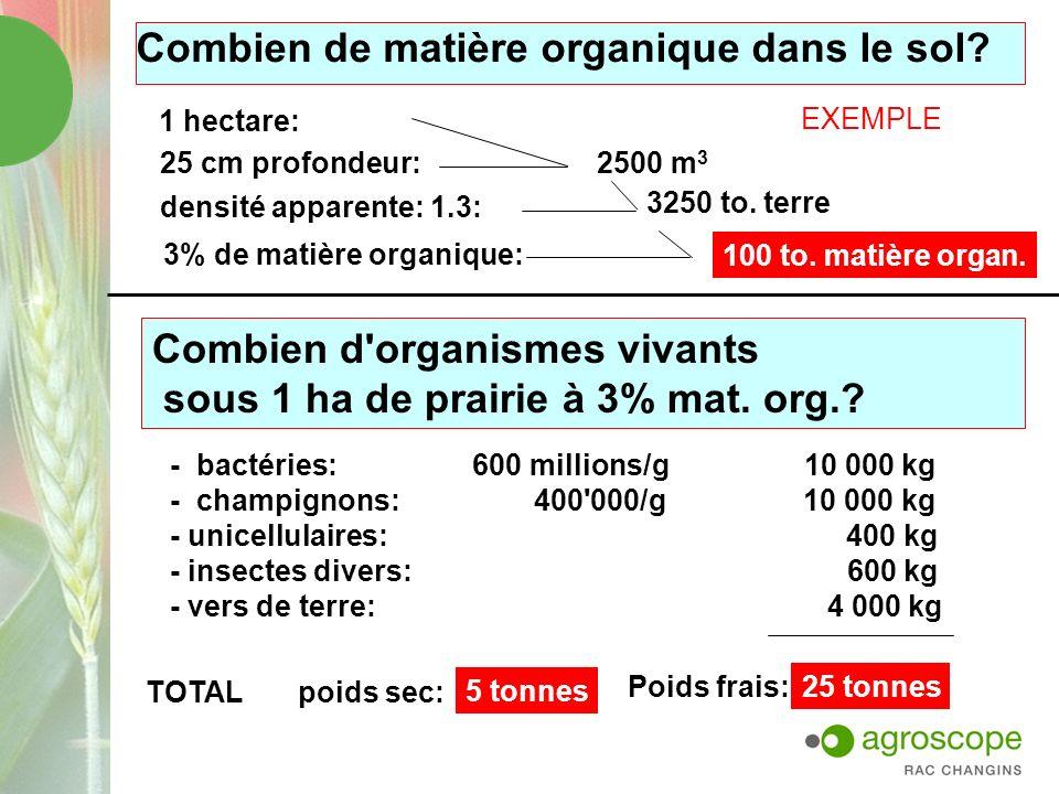 Combien de matière organique dans le sol? 1 hectare: 25 cm profondeur: densité apparente: 1.3: 3% de matière organique: EXEMPLE 2500 m 3 3250 to. terr