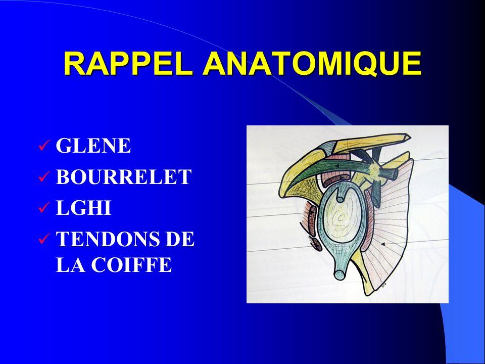 RAPPEL ANATOMIQUE GLENE BOURRELET LGHI TENDONS DE LA COIFFE