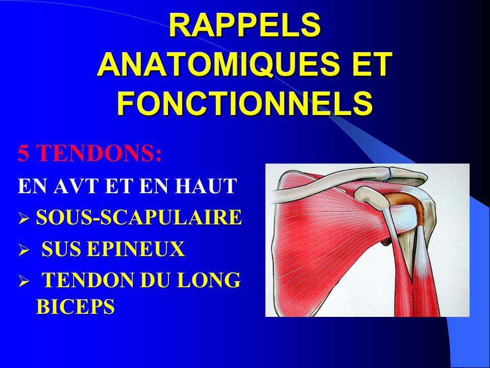 RAPPELS ANATOMIQUES ET FONCTIONNELS 5 TENDONS: EN AVT ET EN HAUT SOUS-SCAPULAIRE SUS EPINEUX TENDON DU LONG BICEPS