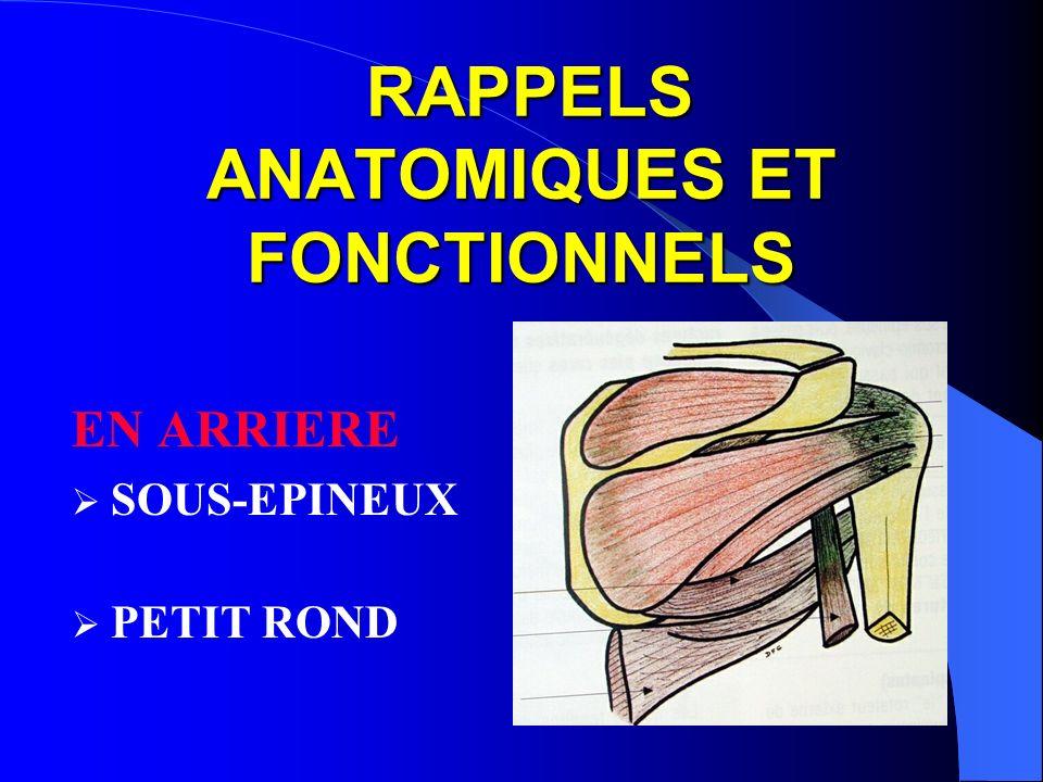 RAPPELS ANATOMIQUES ET FONCTIONNELS RAPPELS ANATOMIQUES ET FONCTIONNELS EN ARRIERE SOUS-EPINEUX PETIT ROND