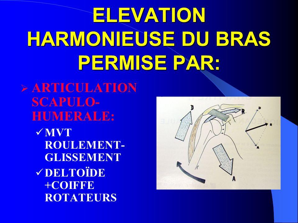 ELEVATION HARMONIEUSE DU BRAS PERMISE PAR: ARTICULATION SCAPULO- HUMERALE: MVT ROULEMENT- GLISSEMENT DELTOÏDE +COIFFE ROTATEURS