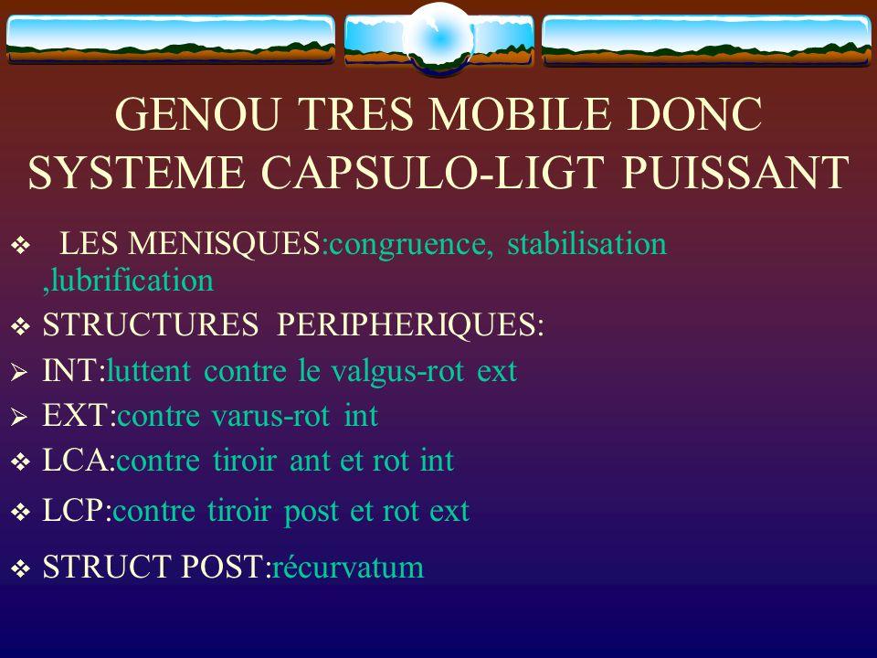 GENOU TRES MOBILE DONC SYSTEME CAPSULO-LIGT PUISSANT LES MENISQUES:congruence, stabilisation,lubrification STRUCTURES PERIPHERIQUES: INT:luttent contr