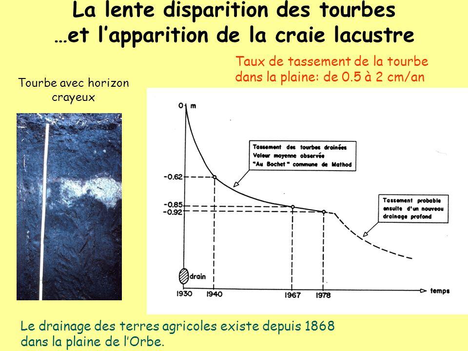 Taux de tassement de la tourbe dans la plaine: de 0.5 à 2 cm/an Le drainage des terres agricoles existe depuis 1868 dans la plaine de lOrbe. Tourbe av