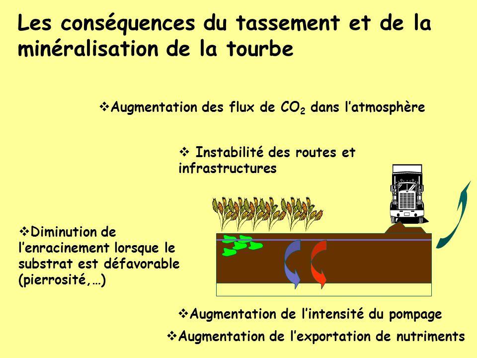 Les conséquences du tassement et de la minéralisation de la tourbe Augmentation des flux de CO 2 dans latmosphère Diminution de lenracinement lorsque