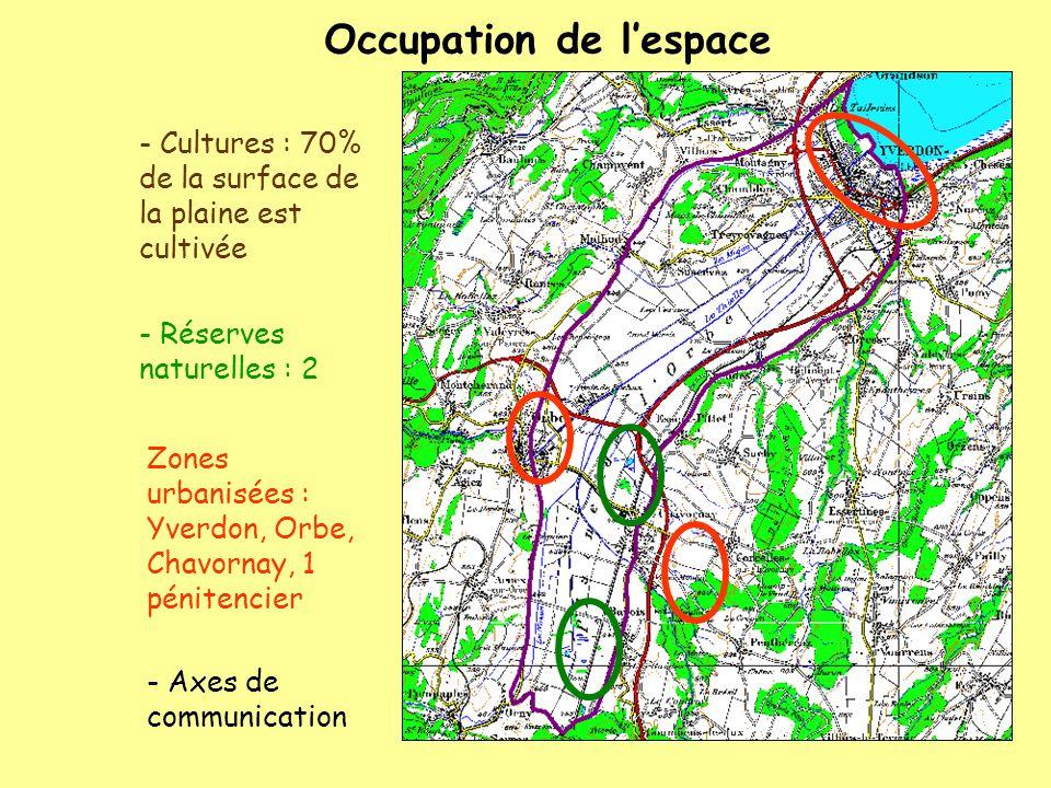 Occupation de lespace Zones urbanisées : Yverdon, Orbe, Chavornay, 1 pénitencier - Cultures : 70% de la surface de la plaine est cultivée - Réserves n