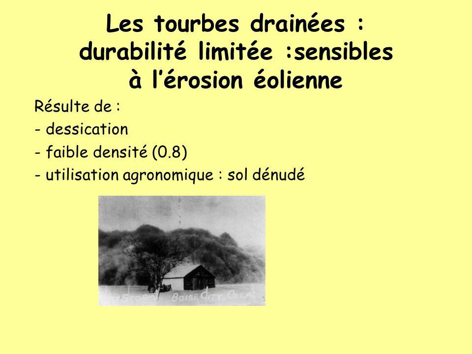 Les tourbes drainées : durabilité limitée :sensibles à lérosion éolienne Résulte de : - dessication - faible densité (0.8) - utilisation agronomique :