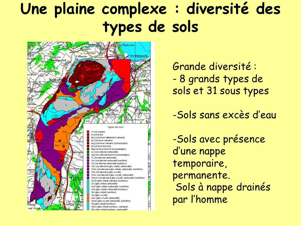 Une plaine complexe : diversité des types de sols Grande diversité : - 8 grands types de sols et 31 sous types -Sols sans excès deau -Sols avec présen