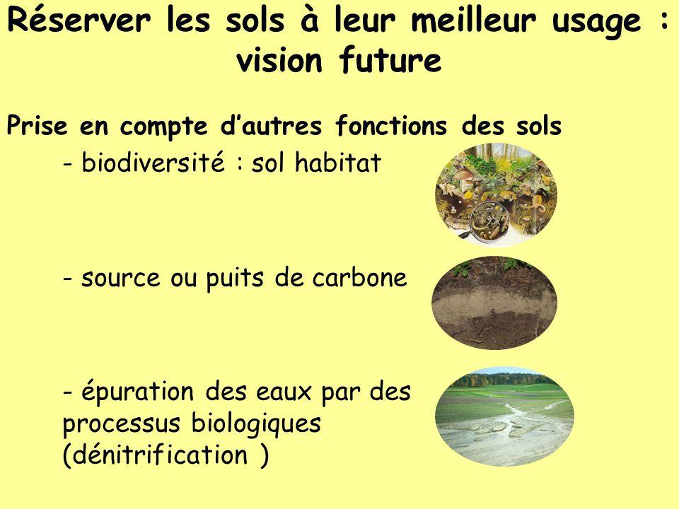 Réserver les sols à leur meilleur usage : vision future Prise en compte dautres fonctions des sols - biodiversité : sol habitat - source ou puits de c