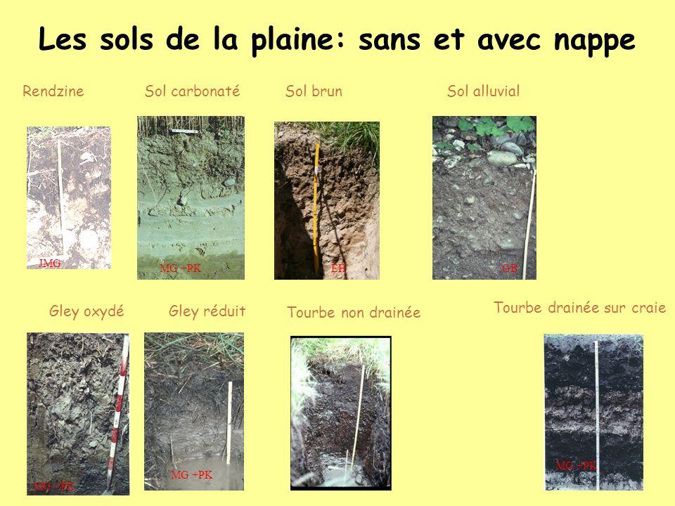 Les sols de la plaine: sans et avec nappe RendzineSol carbonaté Gley oxydé Tourbe drainée sur craie Tourbe non drainée Sol alluvial Gley réduit Sol br