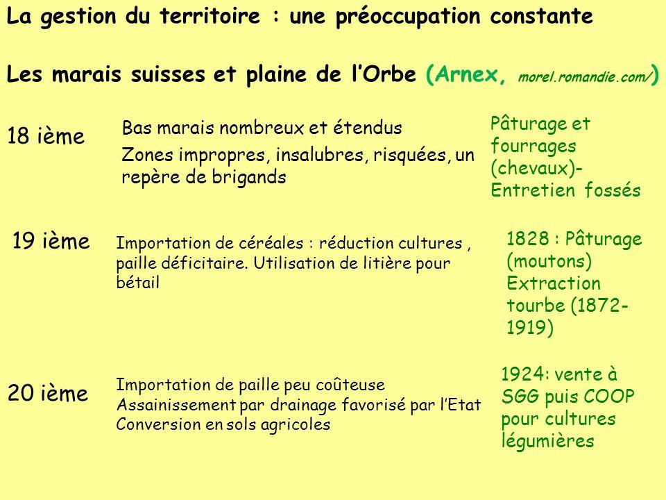 La gestion du territoire : une préoccupation constante Les marais suisses et plaine de lOrbe (Arnex, morel.romandie.com/ ) 18 ième Bas marais nombreux