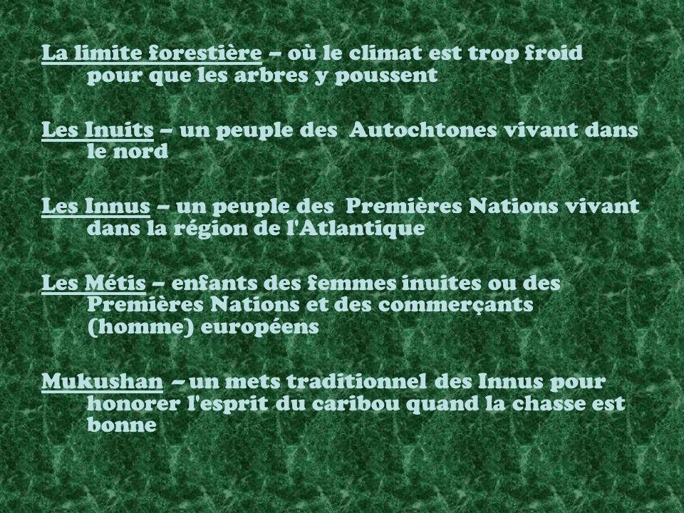 La limite forestière – où le climat est trop froid pour que les arbres y poussent Les Inuits – un peuple des Autochtones vivant dans le nord Les Innus – un peuple des Premières Nations vivant dans la région de l Atlantique Les Métis – enfants des femmes inuites ou des Premières Nations et des commerçants (homme) européens Mukushan – un mets traditionnel des Innus pour honorer l esprit du caribou quand la chasse est bonne