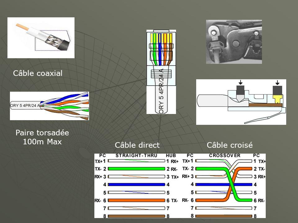 Câble coaxial Paire torsadée 100m Max Câble directCâble croisé
