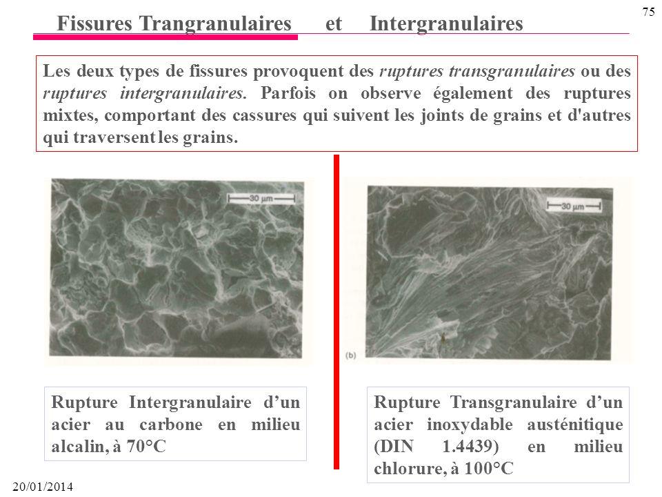 20/01/2014 74 Fissures Trangranulaires et Intergranulaires Fissuration sous contrainte: fissures intergranulaires dans un acier inoxydable austénitiqu
