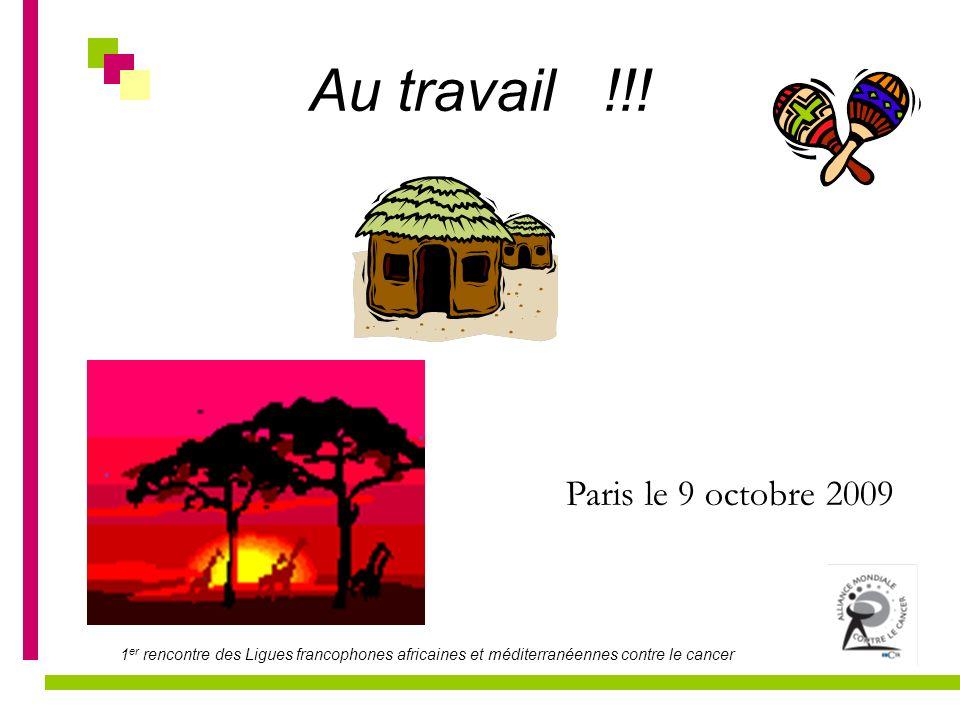 1 er rencontre des Ligues francophones africaines et méditerranéennes contre le cancer Au travail !!! Paris le 9 octobre 2009