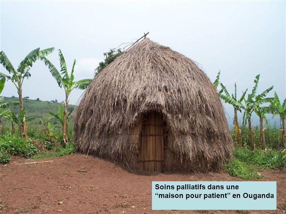 1 er rencontre des Ligues francophones africaines et méditerranéennes contre le cancer Le modèle de soins palliatifs pour l Afrique proposé par l Ouganda (suite) Le service de soins palliatifs de l organisation Hospice Africa Uganda (HAU) a débuté à Kampala en 1993, avec des fonds suffisants pour financer une équipe de trois personnes sur une période de trois mois.