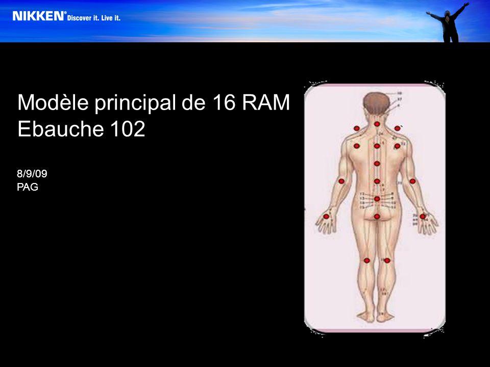 Modèle principal de 16 RAM Ebauche 102 8/9/09 PAG