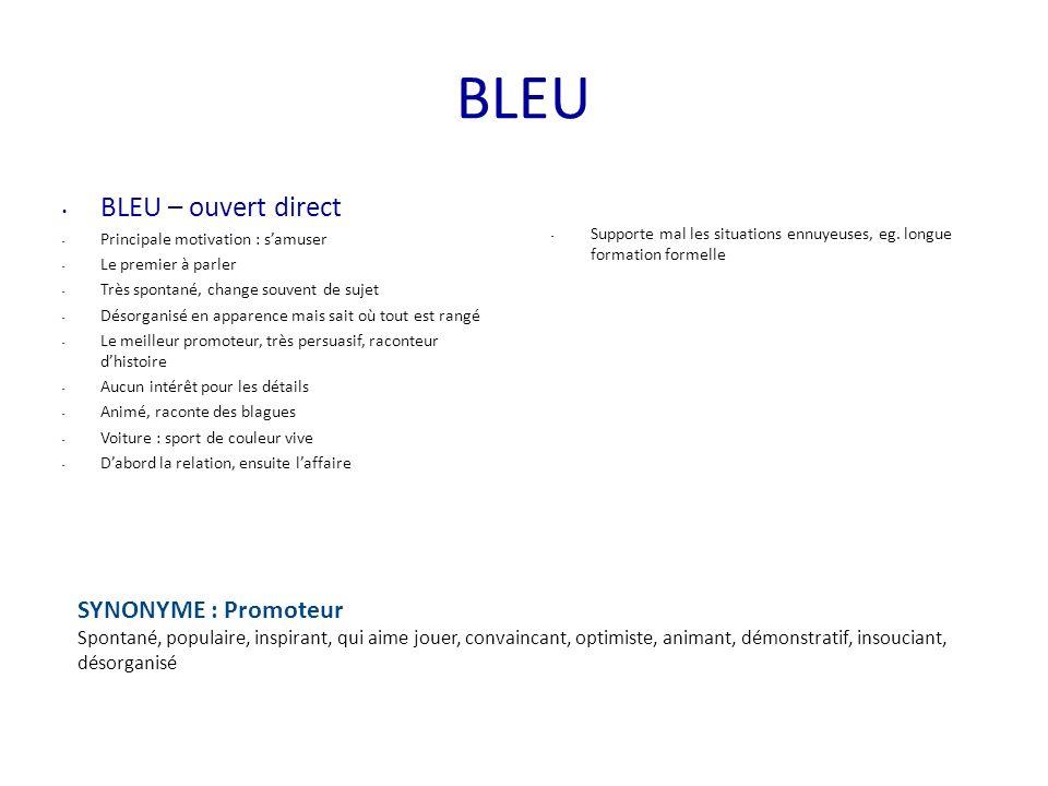 BLEU BLEU – ouvert direct - Principale motivation : samuser - Le premier à parler - Très spontané, change souvent de sujet - Désorganisé en apparence