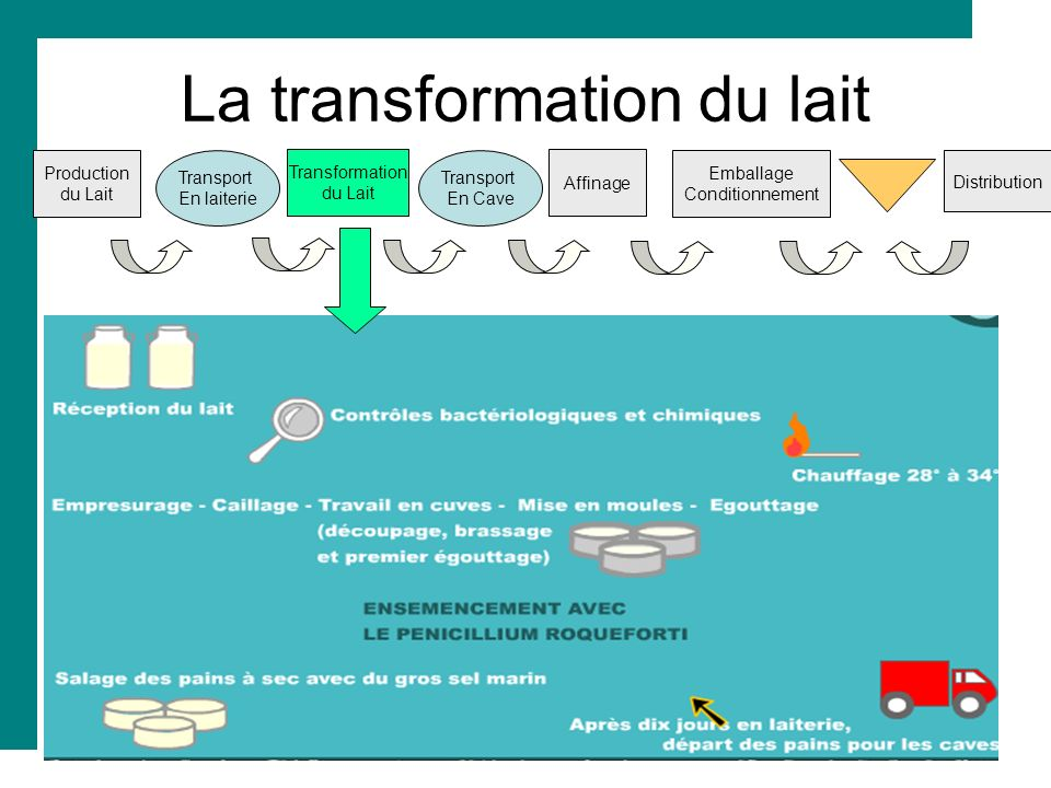 La transformation du lait Production du Lait Transport En laiterie Transformation du Lait Transport En Cave Affinage Distribution Emballage Conditionn