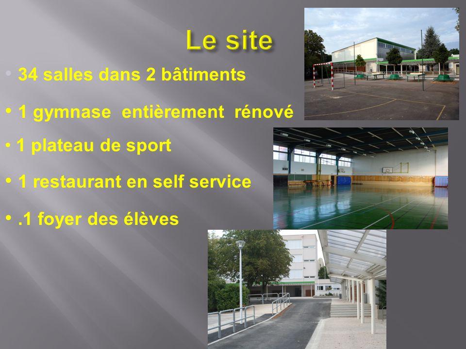 34 salles dans 2 bâtiments 1 gymnase entièrement rénové 1 plateau de sport 1 restaurant en self service.1 foyer des élèves