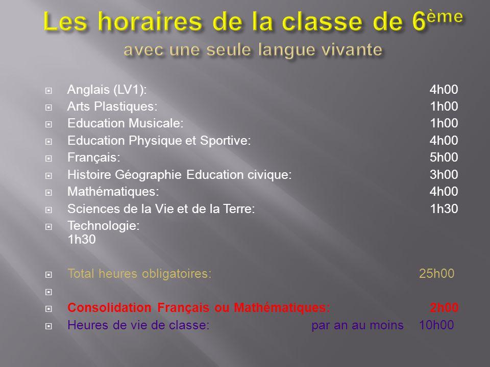Anglais (LV1):4h00 Arts Plastiques:1h00 Education Musicale:1h00 Education Physique et Sportive:4h00 Français: 5h00 Histoire Géographie Education civiq