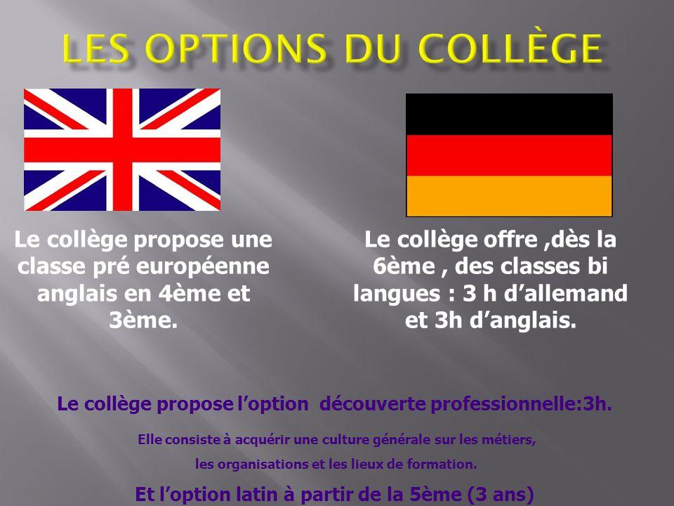 Le collège propose une classe pré européenne anglais en 4ème et 3ème. Le collège offre,dès la 6ème, des classes bi langues : 3 h dallemand et 3h dangl