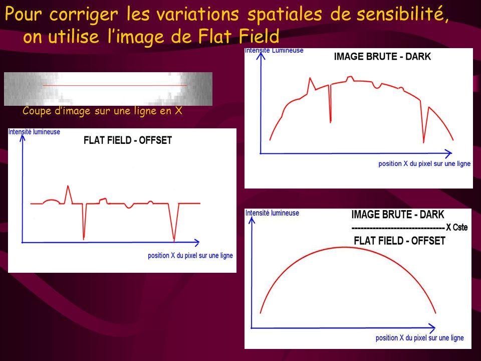 Pour corriger les variations spatiales de sensibilité, on utilise limage de Flat Field Coupe dimage sur une ligne en X