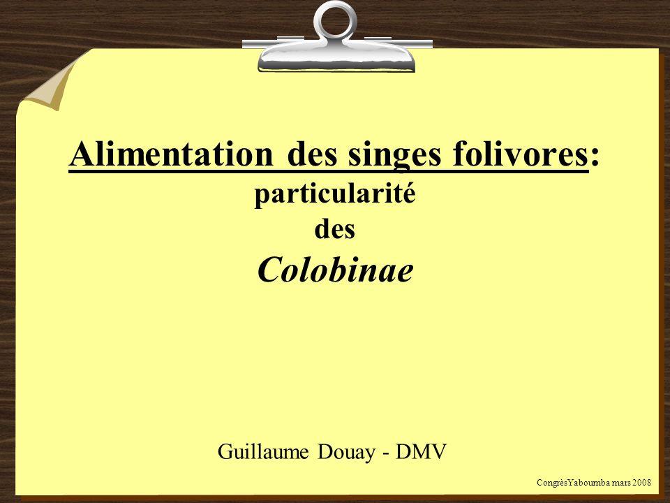 Alimentation des singes folivores: particularité des Colobinae Guillaume Douay - DMV CongrèsYaboumba mars 2008