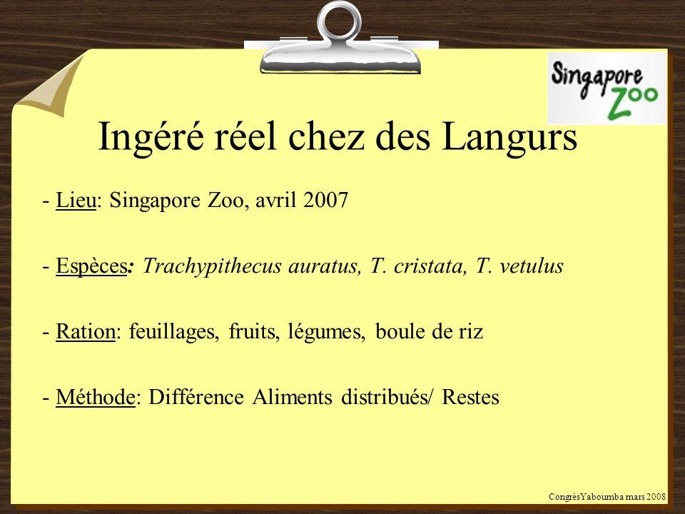 Ingéré réel chez des Langurs - Lieu: Singapore Zoo, avril 2007 - Espèces: Trachypithecus auratus, T. cristata, T. vetulus - Ration: feuillages, fruits