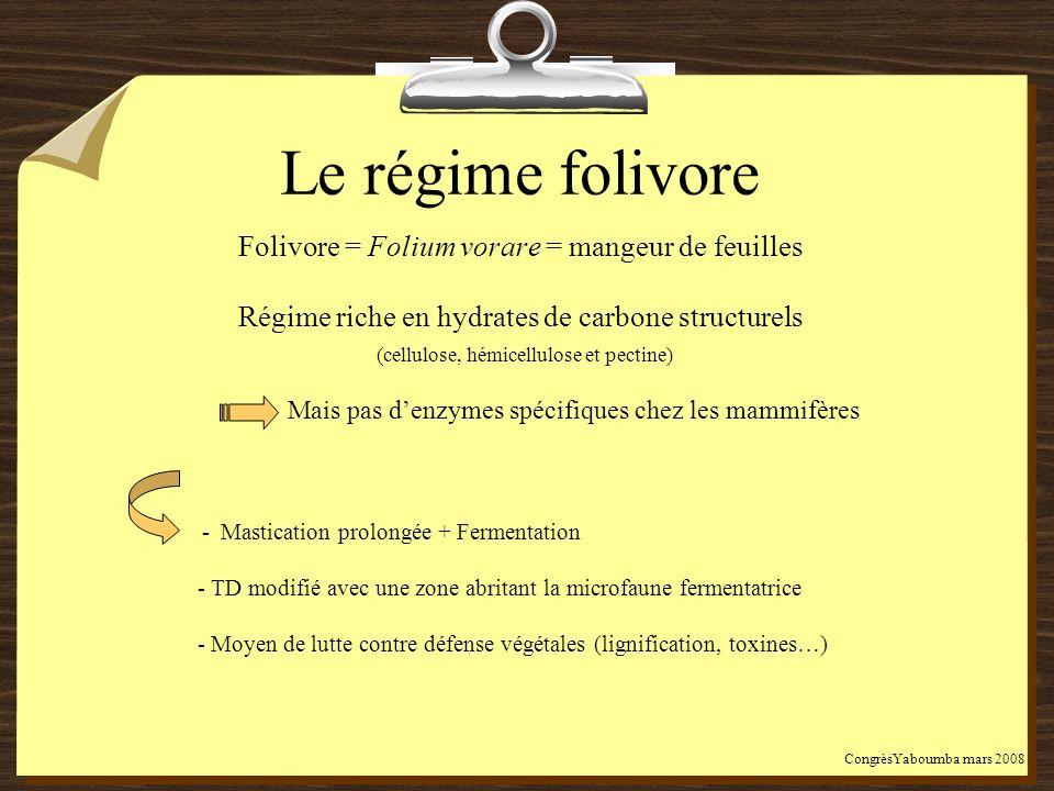Le régime folivore Folivore = Folium vorare = mangeur de feuilles Régime riche en hydrates de carbone structurels (cellulose, hémicellulose et pectine