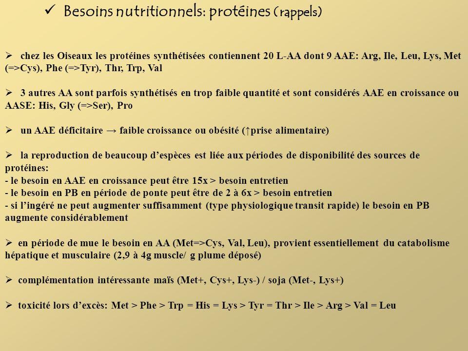 Besoins nutritionnels: protéines (rappels) chez les Oiseaux les protéines synthétisées contiennent 20 L-AA dont 9 AAE: Arg, Ile, Leu, Lys, Met (=>Cys)