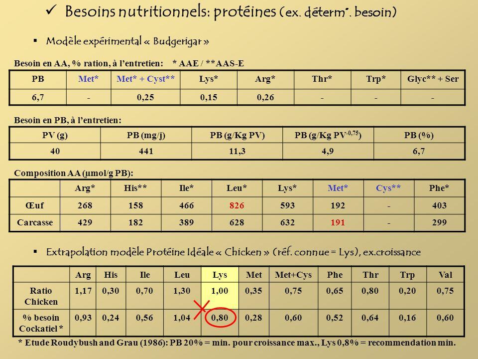 Modèle expérimental « Budgerigar » PBMet*Met* + Cyst**Lys*Arg*Thr*Trp*Glyc** + Ser 6,7-0,250,150,26--- Besoin en AA, % ration, à lentretien: PV (g)PB