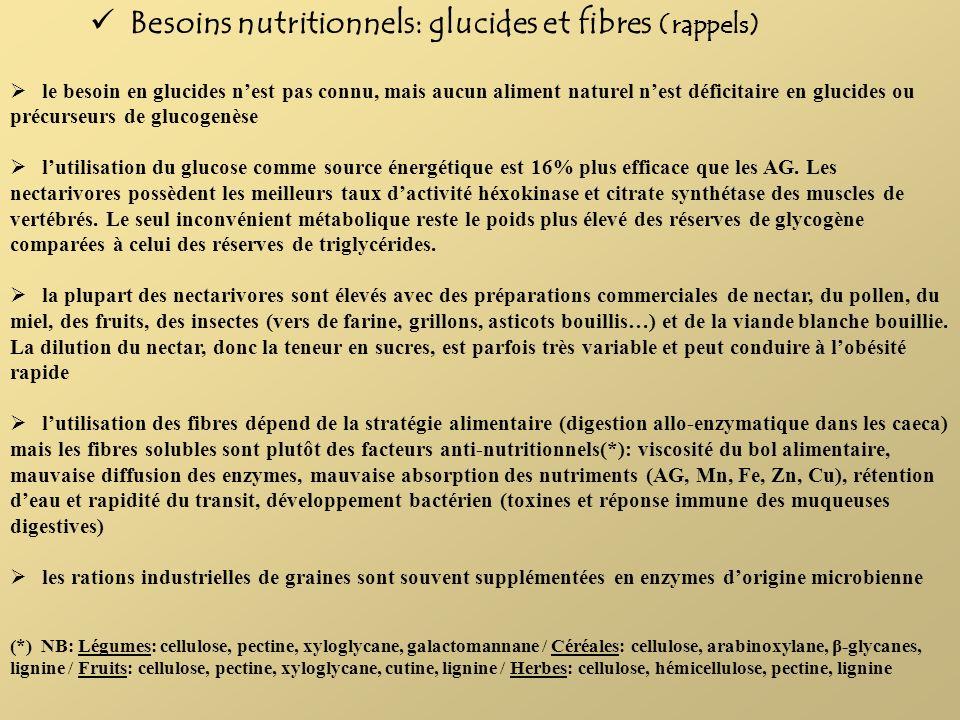 Besoins nutritionnels: glucides et fibres (rappels) le besoin en glucides nest pas connu, mais aucun aliment naturel nest déficitaire en glucides ou p