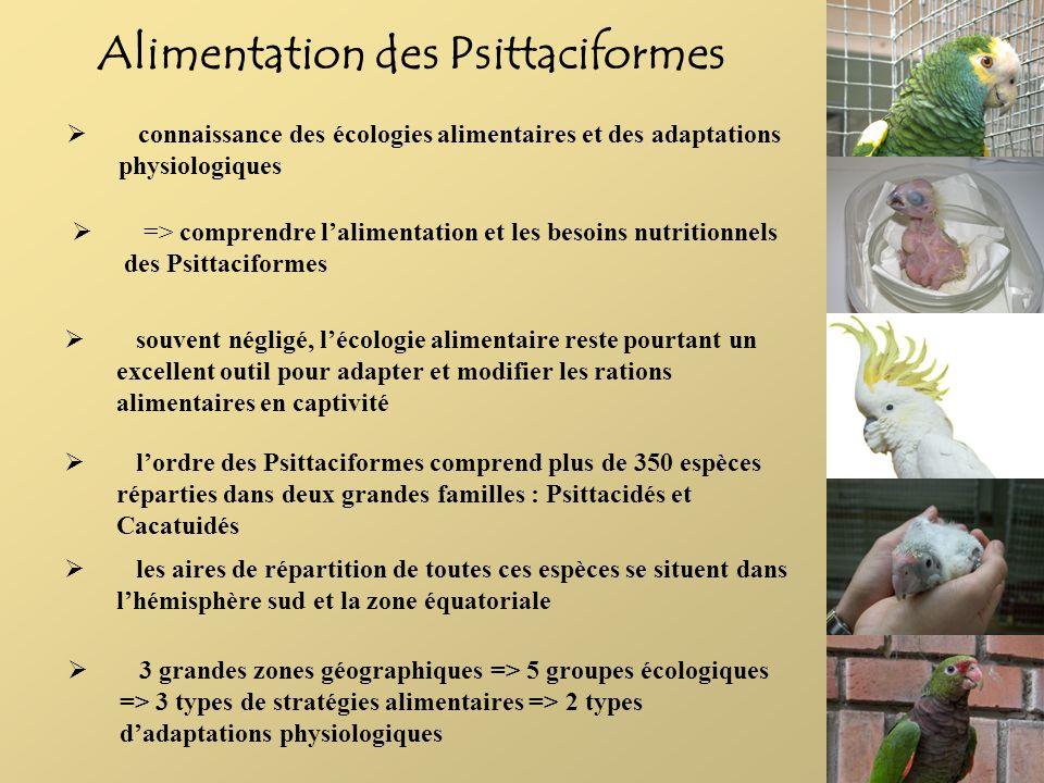 Alimentation des Psittaciformes connaissance des écologies alimentaires et des adaptations physiologiques => comprendre lalimentation et les besoins n