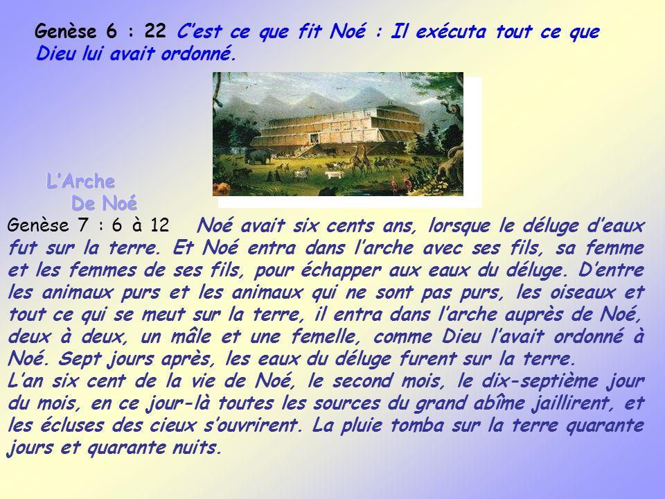 Genèse 6 : 22 Cest ce que fit Noé : Il exécuta tout ce que Dieu lui avait ordonné.