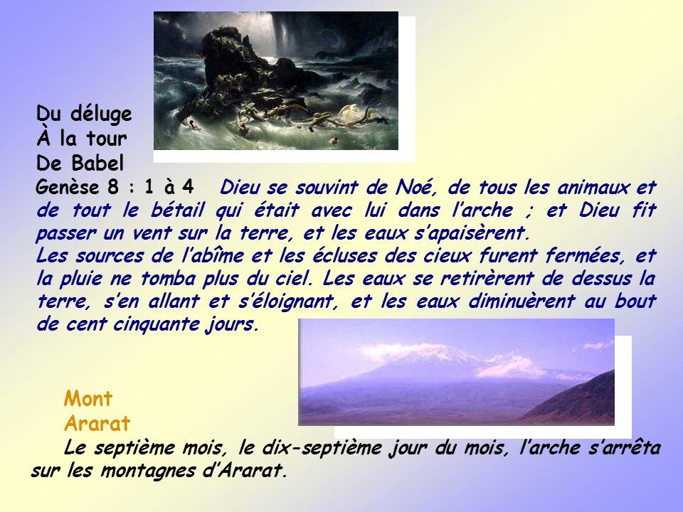 Du déluge À la tour De Babel Genèse 8 : 1 à 4 Dieu se souvint de Noé, de tous les animaux et de tout le bétail qui était avec lui dans larche ; et Die