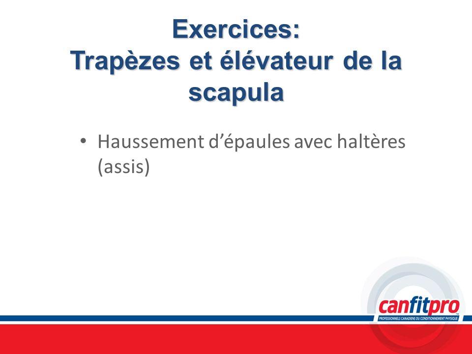 Exercices: Trapèzes et élévateur de la scapula Haussement dépaules avec haltères (assis)