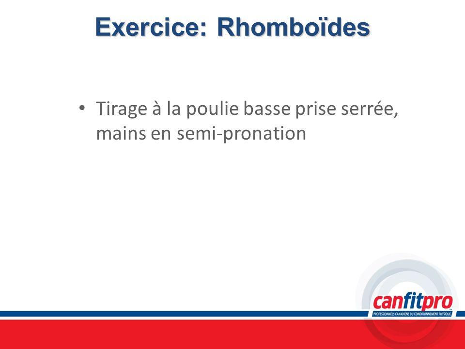 Exercice: Rhomboïdes Tirage à la poulie basse prise serrée, mains en semi-pronation
