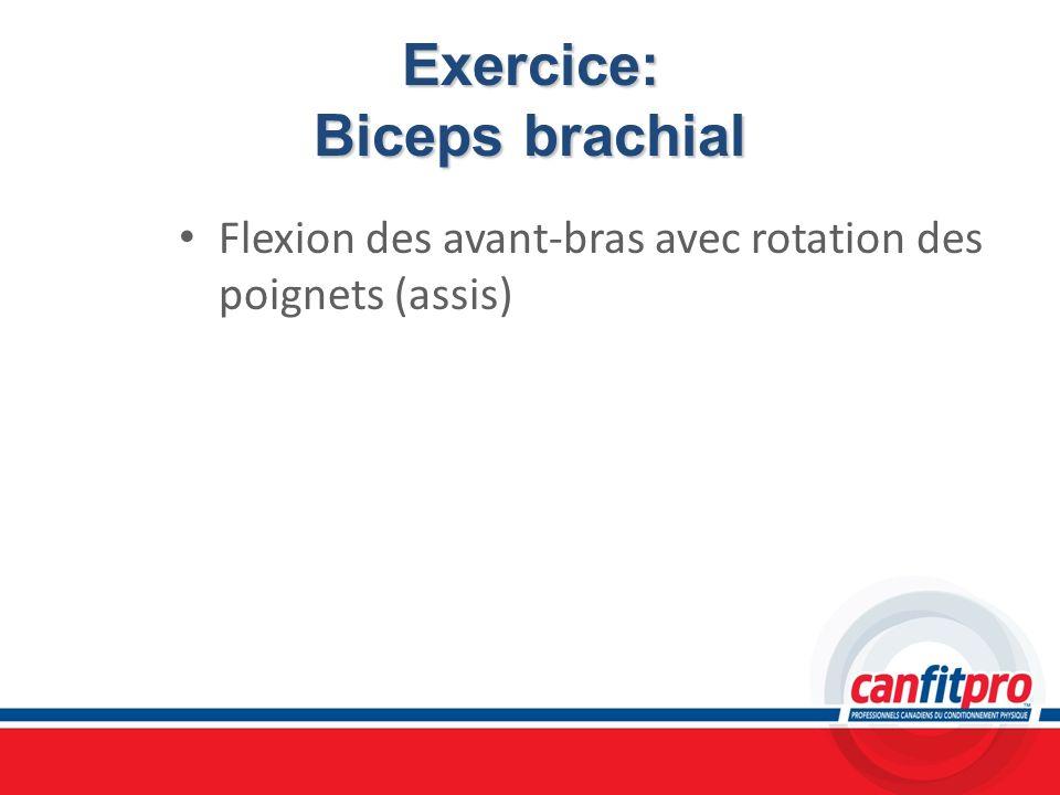 Exercice: Biceps brachial Flexion des avant-bras avec rotation des poignets (assis)