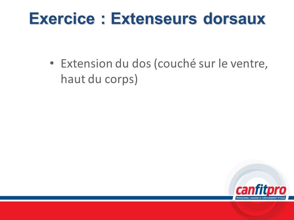 Exercice : Extenseurs dorsaux Extension du dos (couché sur le ventre, haut du corps)