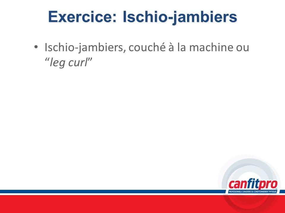 Exercice: Ischio-jambiers Ischio-jambiers, couché à la machine ouleg curl