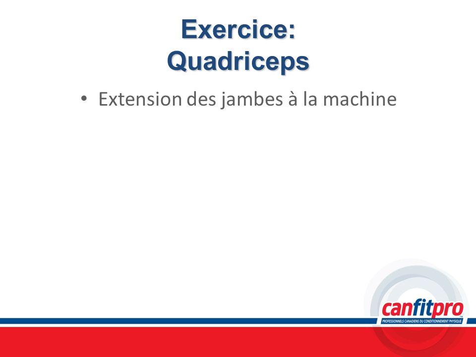 Exercice: Quadriceps Extension des jambes à la machine