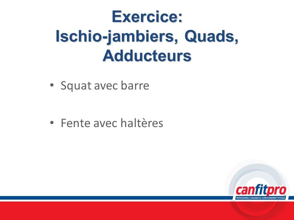 Exercice: Ischio-jambiers, Quads, Adducteurs Squat avec barre Fente avec haltères