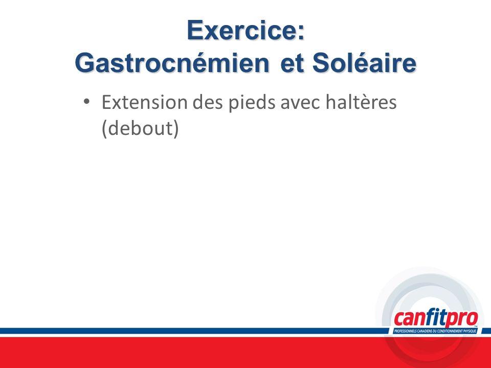 Exercice: Gastrocnémien et Soléaire Extension des pieds avec haltères (debout)
